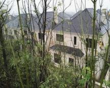 绿地青竹园-外墙氟碳腻子